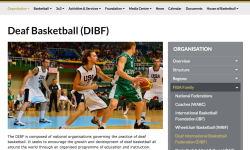 DIBF on FIBA website